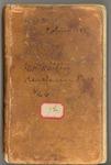 October 1874-circa July 1875 [Journal 18]: Redwood, Yosemite, Shasta, Kings River, etc.