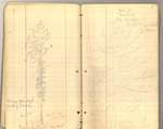 June-August 1878 [Journal 26]: Geodetic Survey from Sacramento to Wasatch Mountains, Utah
