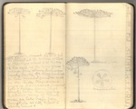 October-November 1911 [Journal 76]: Trip to South America, Part II by John Muir