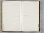 Delia Locke Diary, 1875-1879 by Delia Locke