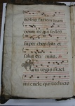 Gradual, Image 20_a by Unknown
