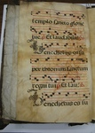 Gradual, Image 21 by Unknown