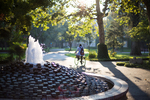Library Fountain by University of the Pacific