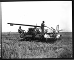 Agricultural Machinery - Calif - Stockton: Tractor