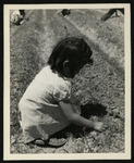 [Girl playing in field while parents work in distance (Granada)]
