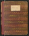 Alaska Notes, Summer of 1880, 1880 [ca. 1895]