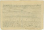 Sierra Nevada - Mountains - View of Sierra from Twenty Hill Hollow, Feb. 18, 1869, Connecting Link of Yearly Flower Circle in Foreground