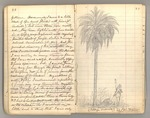 "July 1867 - February 1868, The ""thousand mile walk"" from Kentucky to Florida and Cuba Image 48"