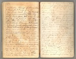 """July 1867 - February 1868, The """"thousand mile walk"""" from Kentucky to Florida and Cuba Image 112 by John Muir"""