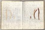 January-May 1869, Twenty Hill Hollow Image 16
