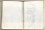 January-May 1869, Twenty Hill Hollow Image 41