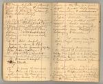 December 1872 - June 1873, Wind Storm, Pine Trees, Feeding, etc. Image 11