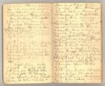 December 1872 - June 1873, Wind Storm, Pine Trees, Feeding, etc. Image 12
