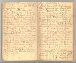 December 1872 - June 1873, Wind Storm, Pine Trees, Feeding, etc. Image 13