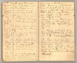 December 1872 - June 1873, Wind Storm, Pine Trees, Feeding, etc. Image 17