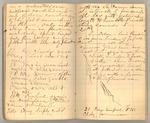 December 1872 - June 1873, Wind Storm, Pine Trees, Feeding, etc. Image 20