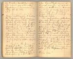 December 1872 - June 1873, Wind Storm, Pine Trees, Feeding, etc. Image 21