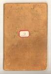 Summer circa 1874, Torreya, Merced Cañon Image 1 by John Muir