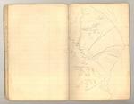 Summer circa 1874, Torreya, Merced Cañon Image 6 by John Muir