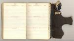 First Trip to Mount Shasta, October-November 1874 Image 39