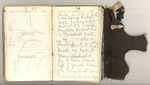 First Trip to Mount Shasta, October-November 1874 Image 45