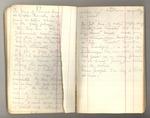 October 1874-circa July 1875, Redwood, Yosemite, Shasta, Kings River, etc. Image 21