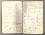 October 1874-circa July 1875, Redwood, Yosemite, Shasta, Kings River, etc. Image 24