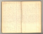 May-July 1877, Travels in Utah, etc. Image 42