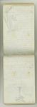 September-November 1877, Trip with Hooker, Gray, Bidwells, etc. Image 28
