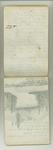 September-November 1877, Trip with Hooker, Gray, Bidwells, etc. Image 35