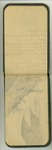 July 1890, Glacier Sled Trip Sketches and Notes Image 6 by John Muir