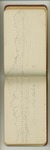 August-September 1896, Forest Field Studies Image 24 by John Muir