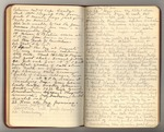 July-November 1897, Botany Trip with Sargent and Canby Image 8