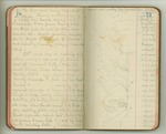 May-June 1899, Harriman Expedition to Alaska, Part I, San Francisco to Harriman Fiord Image 46 by John Muir