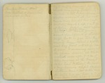 August-November 1903, World Tour, Part III Image 2 by John Muir