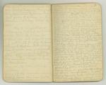 August-November 1903, World Tour, Part III Image 3 by John Muir