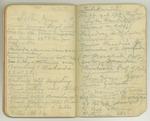 August-November 1903, World Tour, Part III Image 43 by John Muir