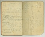 August-November 1903, World Tour, Part III Image 44 by John Muir