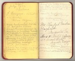 July-September 1905, February 1906, Tree Notes on Petrified Forest Image 3