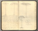 October-November 1911, Trip to South America, Part II Image 3 by John Muir