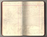 November 1911-March 1912, Trip to South America, Part III, and Trip to Africa Image 30 by John Muir