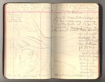 November 1911-March 1912, Trip to South America, Part III, and Trip to Africa Image 31 by John Muir