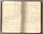 November 1911-March 1912, Trip to South America, Part III, and Trip to Africa Image 39