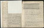 Sierra Journal, Summer of 1869, v. 1, 1869 [ca. 1887], Image 5 by John Muir