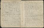 Sierra Journal, Summer of 1869, v. 1, 1869 [ca. 1887], Image 6 by John Muir