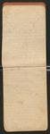 [Sargent's Silva], [ca. 1903], Image 7 by John Muir