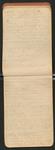 [Sargent's Silva], [ca. 1903], Image 12 by John Muir