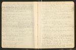 [Stickeen, etc.], [ca.1887], Image 8 by John Muir