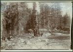 John Muir with two unidentified women in Sierra Nevada, California?