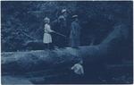 Mary Elizabeth Newton, John Muir, William Newton Sr. Mary Elizabeth (Harrison) William Newton Jr. at Muir Woods